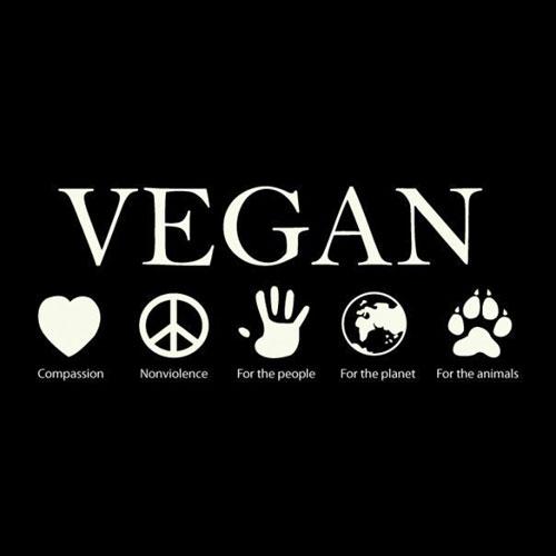 vegan-reasons